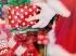 Negyven család kapott ajándékcsomagot Szegeden